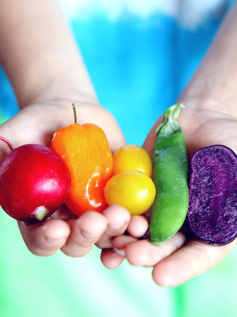 Rainbow of vegetables in a child's hand